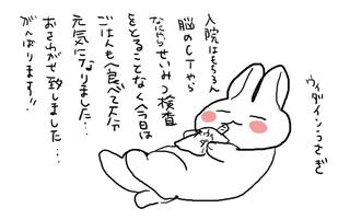 うぃだー.png
